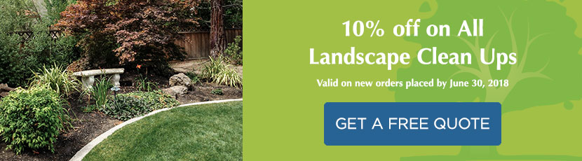 10% off on All Landscape Clean Ups