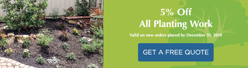 5% Off All Planting Work